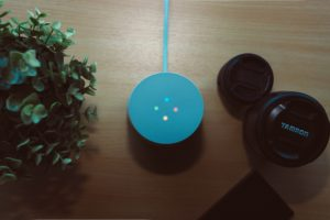 smart-speaker1